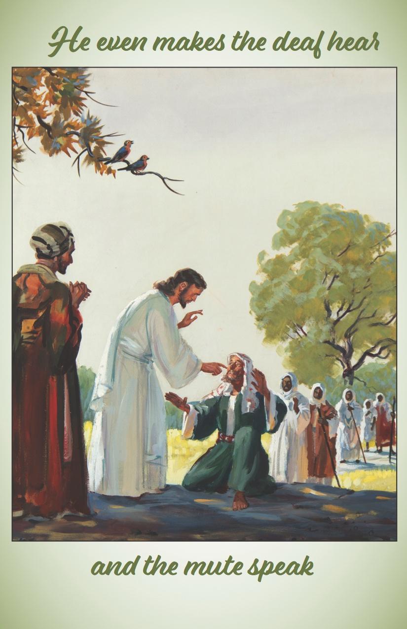 Bulletin for Sixteenth Sunday after Pentecost